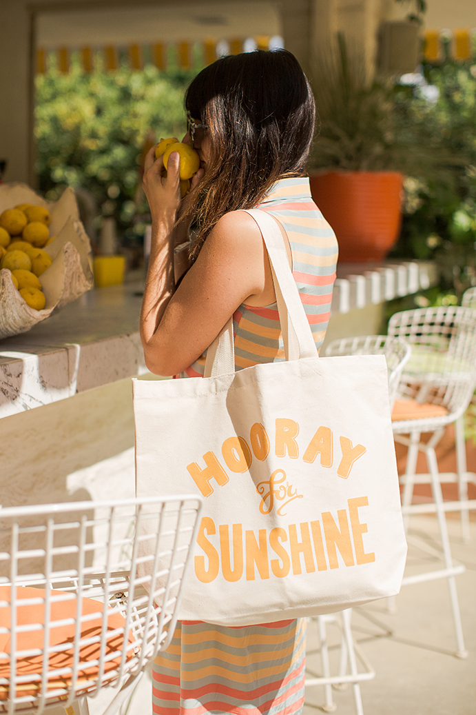 Alphabet Bags Bon Voyage in Palm Springs. Photographer Marianne Taylor.